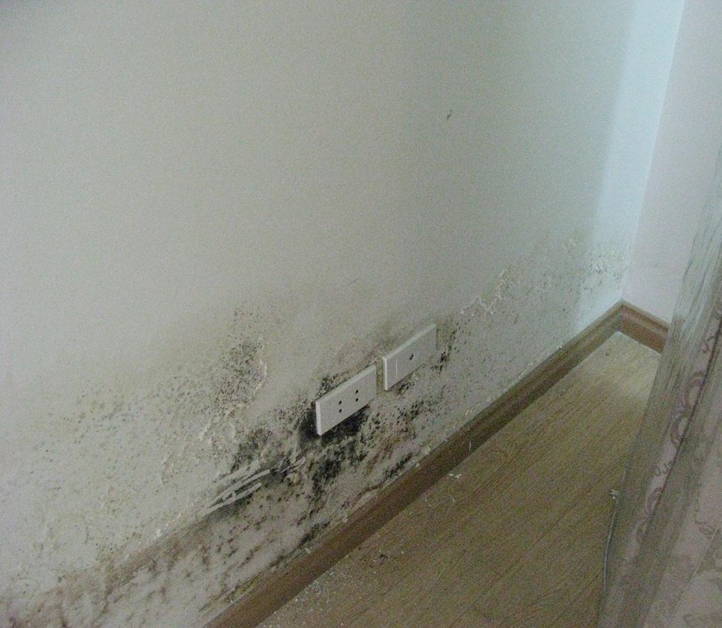 Bật mí bí quyết xử lý các vết bẩn trên tường nhà của bạn
